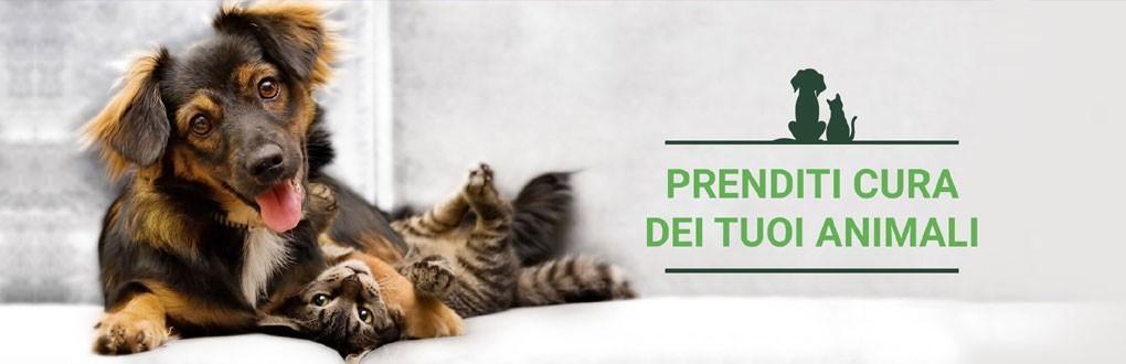 Protezione veterinaria: farmaci veterinari con o senza ricetta.